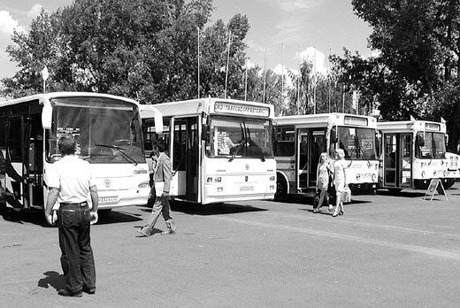 Автобусная сеть без прорех