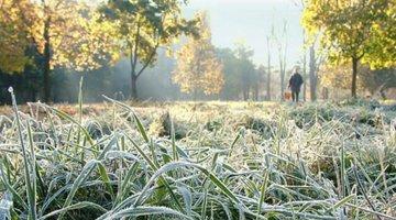 Красноярску пообещали первый снег уже через несколько дней