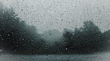 Дожди сменят аномальную жару в Красноярске