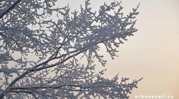 В Красноярск придет потепление на выходных